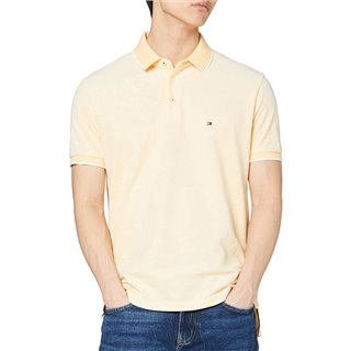 Tommy Hilfiger Sunny Oxford Tipepd Polo