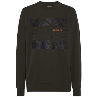 Calvin Klein Dark Olive Graphic Box Sweater
