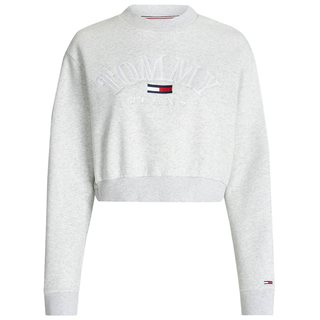 Tommy Hilfiger Silver Grey Logo Cropped Sweater