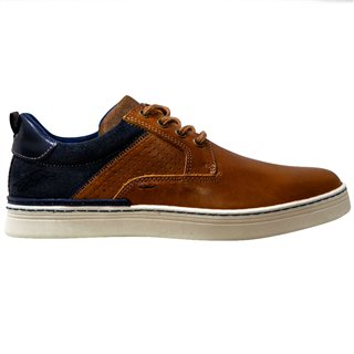Tommy Bowe LLoyd & Pryce Aztec Cedar Carberry Trainer