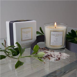 Eau Lovely Eau So Splendid Sea Salt & Aged Flint Candle
